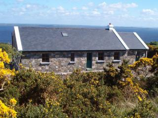 Nice 3 bedroom Tourmakeady Cottage with Tennis Court - Tourmakeady vacation rentals