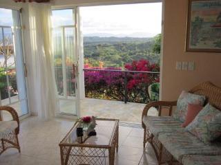 Fair Return:  ocean, valley  views, pool, residential. - Luperón vacation rentals