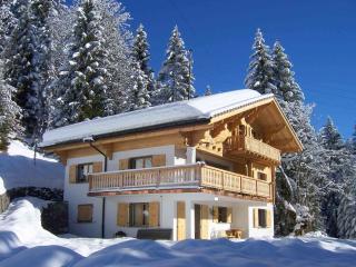 Chalet Le Torrent  - Villars/Les Diablerets Resor - Villars-sur-Ollon vacation rentals