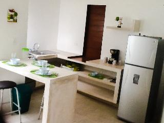 Merida North Cute Fully Furnished Apartment. Best location! - Merida vacation rentals