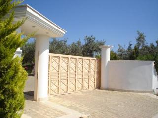 Athens villa, coast area, Villa Laurel - Kalyvia Thorikou vacation rentals