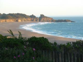 Gualala Point View - Gualala vacation rentals