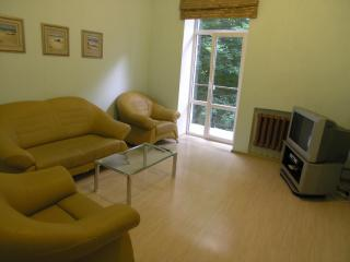 Three room apartment on Independence square - Ukraine vacation rentals