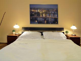 Classy Studio, ART NOUVEAU house - Prague vacation rentals