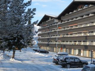 Nice 2 bedroom Condo in Maria Alm - Maria Alm vacation rentals
