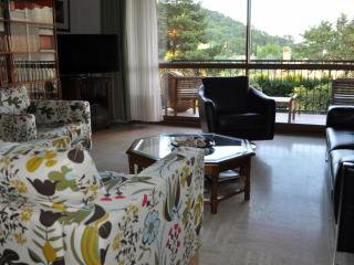 Beautiful Apartment, Aix en Provence - Aix-en-Provence vacation rentals