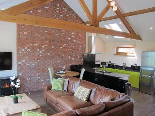 Moonshine nr Bude - Bude vacation rentals