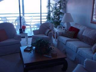 Riverside Club - Marco Island vacation rentals