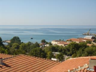 Nice Condo with Internet Access and A/C - Kavarna vacation rentals