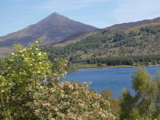 Loch Rannoch Highland Club Apartment - Kinloch Rannoch vacation rentals
