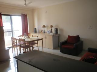 Beautiful and cozy 1 Bedroom apartment in the best part of the city - Pune vacation rentals