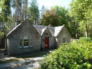 Beautiful 2 bedroom Cottage in Newtonmore - Newtonmore vacation rentals