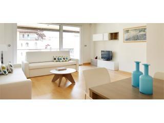 Hondarribi 14.2.A   New and exclusive, big capacity - Doneztebe-Santesteban vacation rentals