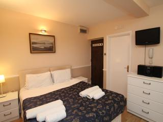 Standard Studio Apartment - London vacation rentals
