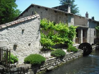 Beautiful Watermill Accomodation With Heated Pool, sleeps 6, Poitou Charentes ! - Melle vacation rentals