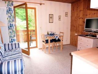 1 bedroom Condo with Internet Access in Bayerisch Eisenstein - Bayerisch Eisenstein vacation rentals