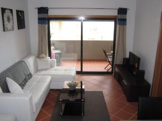 Beautiful Condo with Internet Access and Satellite Or Cable TV - Armação de Pêra vacation rentals