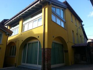 Nice Condo with Internet Access and Central Heating - Gavirate vacation rentals