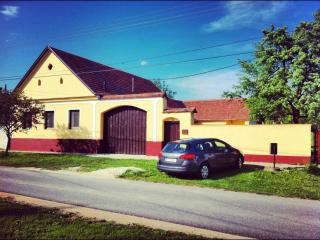 Spacious 5 bedroom Farmhouse Barn in Horvatzsidany - Horvatzsidany vacation rentals