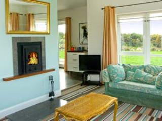 Spacious House with Television and DVD Player - Broadhaven vacation rentals