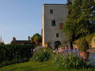 Comfortable Tower with Internet Access and Television - Rignano sull'Arno vacation rentals