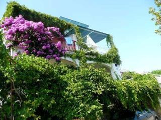 Apartment Tangerine - Seget Vranjica vacation rentals