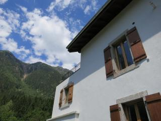 Spacious, recently renovated Les Bossons apartment - Chamonix vacation rentals