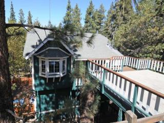 1134 SISKIYOU DR. BIG BEAR 59 - Big Bear Lake vacation rentals