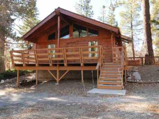844 Ravine Rd. Big Bear Lake 67 - Big Bear Lake vacation rentals