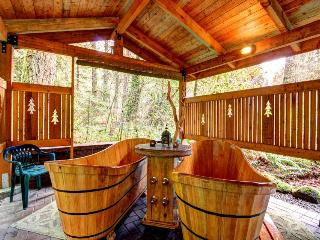 Brightwood Guest House and Cabin - Brightwood vacation rentals
