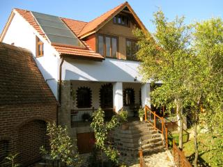 • Villa Crina • our jewel for high demands at the Carpathian foothills - Sibiu vacation rentals