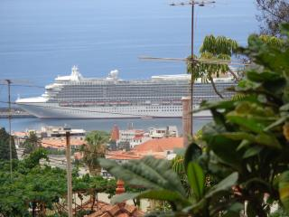 Madeira pearl of the Atlantic - Funchal vacation rentals