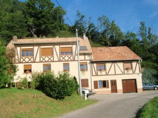 Nice Gite with Satellite Or Cable TV and Freezer - Rombach-le-Franc vacation rentals