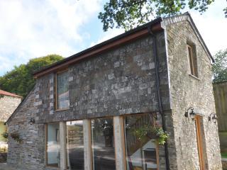 Romantic Barn in Tavistock with Grill, sleeps 3 - Tavistock vacation rentals