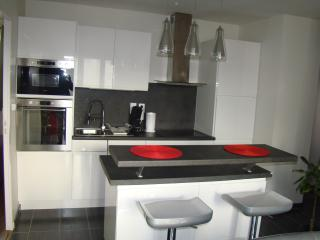 WELCOME TO LYON !  GREAT LOCATION near the METRO ! - Caluire et Cuire vacation rentals