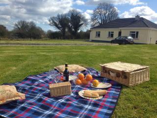 Primrose Cottage - Nenagh vacation rentals