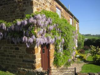 Charming Cottage with Internet Access and Television - Belton-in-Rutland vacation rentals
