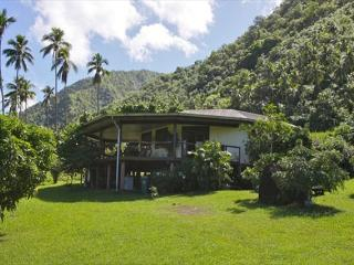Three bedroom Tahitian home - Teahupoo vacation rentals