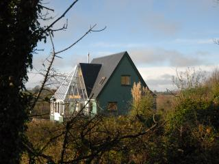 2 bedroom House with Internet Access in Gort - Gort vacation rentals