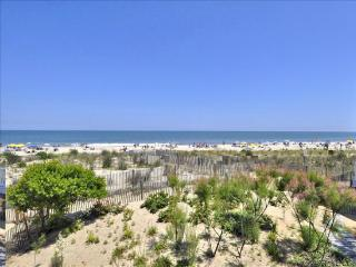 Gorgeous 4 bedroom Apartment in Ocean City - Ocean City vacation rentals