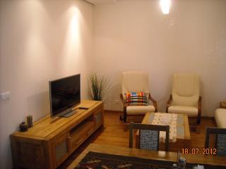 Lovely 1 bedroom Condo in Krakow - Krakow vacation rentals
