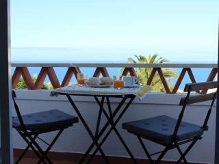 A beautiful house with Sea View - Ericeira vacation rentals