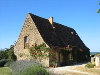 GITE PERIGORD NOIR - Le Buisson-de-Cadoin vacation rentals