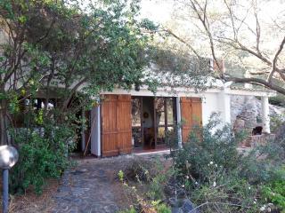 villa Liliana - Torre delle Stelle vacation rentals
