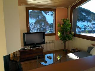 2 bedroom Penthouse with Internet Access in El Tarter - El Tarter vacation rentals