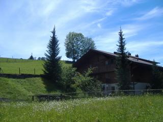 Lovely 2 bedroom Ski chalet in Zweisimmen - Zweisimmen vacation rentals