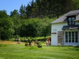 Lovely Cottage with Internet Access and Satellite Or Cable TV - Lasseube vacation rentals