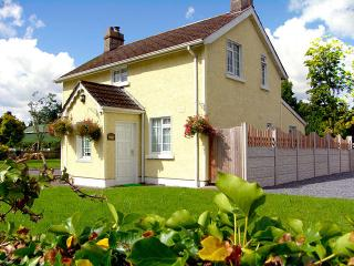 Nice Cottage with Television and DVD Player - Tipperary vacation rentals