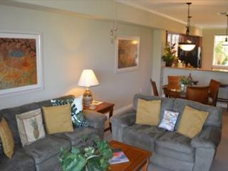 Nice Condo with Deck and Internet Access - Waikoloa vacation rentals