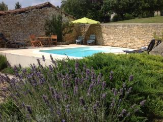 Maison de vacances avec piscine : la Cagouille - Beaulieu-sur-Sonnette vacation rentals